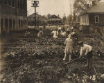 Children working in a garden in town.