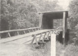 Wasden Road Covered Bridge over Pintlala Creek with unique flat roof, Montgomery County, Alabama.