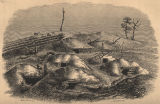 Lithograph of Spanish Fort from HISTORY OF THE CAMPAIGN OF MOBILE by C. C. Andrews.
