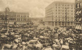 Selling cotton in Court Square in downtown Montgomery, Alabama.