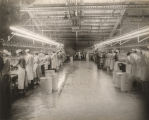 Workers at the Marshall Durbin poultry processing plant in Jasper, Alabama.