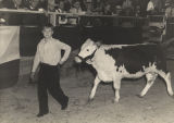 Member of the 4-H Club with his calf at a livestock show in Montgomery, Alabama.