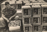 Man surrounded by crates of Alarico yams.