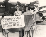 Cow wearing a crown and banner to meet the American Dairy Princess at the airport in Montgomery,...