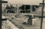 Gardens between barracks at the German POW camp in Aliceville, Alabama.