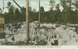 """Marble ready for shipping, Marble Yard, Sylacauga, Alabama."""