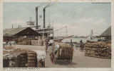 """The Cotton Docks, Mobile, Ala."""