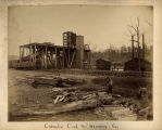 """Cahaba Coal and Mining Co."""