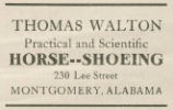 "Advertisement for ""Practical and Scientific Horse-Shoeing"" by Thomas Walton in..."