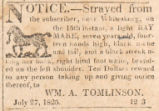 Advertisement for a strayed horse, submitted by William A. Tomlinson in Madison County, Alabama.