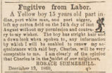 Advertisement for a runaway slave, submitted by Horace Summerhill in Lauderdale County, Alabama.
